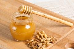 Miel de la abeja con las nueces Foto de archivo