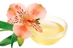 Miel de la flor Fotografía de archivo libre de regalías