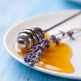 Miel de la lavanda Foto de archivo libre de regalías