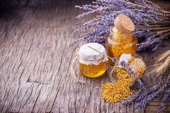 Miel de la lavanda con polen de la abeja Imágenes de archivo libres de regalías