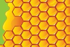 Miel de nid d'abeilles Illustration de Vecteur