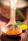 Miel de santé photo stock