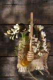 Miel del acacia Foto de archivo