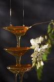 Miel del acacia Fotos de archivo
