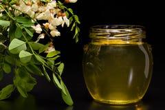 Miel del acacia Imágenes de archivo libres de regalías