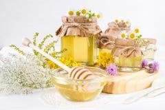 Miel del líquido de la luz natural Miel en los tarros de cristal y cazo con las flores salvajes Fotografía de archivo