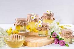 Miel del líquido de la luz natural Miel en los tarros de cristal y cazo en el fondo blanco Fotografía de archivo
