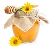 Miel dulce con las margaritas amarillas Fotos de archivo libres de regalías