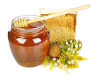Miel dulce en el tarro de cristal Fotografía de archivo libre de regalías