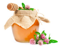 Miel dulce en un tarro de cristal con el trébol Imagen de archivo libre de regalías