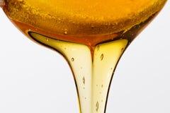 Miel en bois de cuillère Images stock