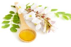 Miel en cuchara con la flor del acacia Imágenes de archivo libres de regalías