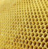 Miel en nids d'abeilles Photos libres de droits