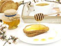 Miel en tostada Imagen de archivo libre de regalías