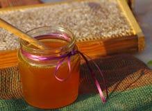 Miel en un tarro de cristal y panales de la abeja Imagen de archivo libre de regalías