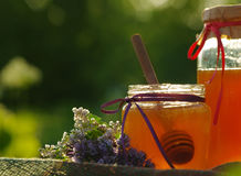 Miel en un tarro de cristal y panales de la abeja con las hierbas melíferas de las flores Imagen de archivo