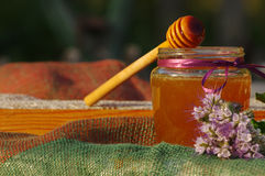 Miel en un tarro de cristal y panales de la abeja con las hierbas melíferas de las flores en una superficie de madera Foto de archivo libre de regalías