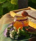 Miel en un tarro de cristal y panales de la abeja con las hierbas melíferas de las flores en una superficie de madera Imágenes de archivo libres de regalías