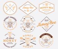 Miel et abeilles colorés Image libre de droits