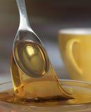 Miel et cuillère Image libre de droits