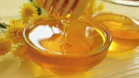miel, flor del crisantemo en el fondo de madera, goteo de la cámara lenta almacen de video