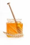 Miel frais Photos libres de droits