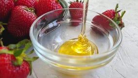 Miel fresca, cámara lenta deliciosa de goteo de la fresa almacen de metraje de vídeo