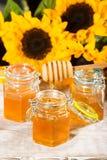 Miel fresca con los girasoles amarillos coloridos Imagen de archivo