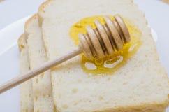 Miel fresca con un palillo Imagen de archivo libre de regalías