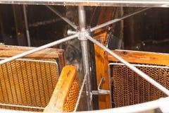 Miel fresca de la abeja del panal Imágenes de archivo libres de regalías