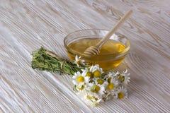 Miel fresca de la primavera con las flores de la manzanilla Fotos de archivo libres de regalías