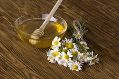Miel fresca de la primavera con las flores de la manzanilla Fotografía de archivo libre de regalías