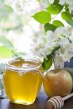 Miel fresca deliciosa de la primavera en el tarro de cristal Foto de archivo libre de regalías