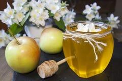 Miel fresca deliciosa de la primavera en el tarro de cristal Fotografía de archivo libre de regalías