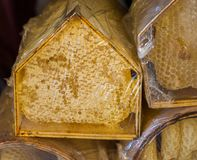 Miel fresca en el marco sellado del peine Imagen de archivo