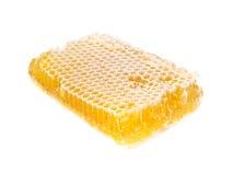 Miel fresca en el peine Imagen de archivo libre de regalías