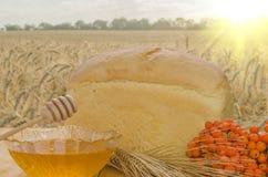 Miel fresca en una tabla Foto de archivo