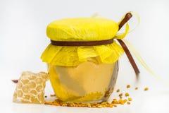 Miel herbaria aislada Imagenes de archivo