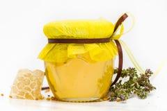 Miel herbaria aislada Fotografía de archivo