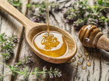 Miel herbaria que vierte en la cuchara de madera La cuchara está en la madera vieja Imagenes de archivo