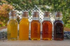 Miel, la gamme de couleur et saveurs photos libres de droits