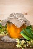 Miel natural del tilo Foto de archivo libre de regalías