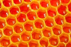 Miel orgánica fresca - concepto sano de la comida Imagen de archivo