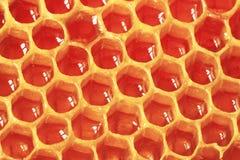 Miel orgánica fresca - concepto sano de la comida Imagen filtrada: efecto procesado cruz del vintage Imagenes de archivo