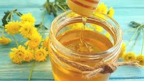 Miel, postre natural de la flor del crisantemo en el fondo de madera, goteo de la cámara lenta almacen de video