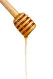 Miel que fluye abajo de un palillo de madera Imagenes de archivo