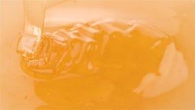 Miel que vierte en la miel en la cámara lenta