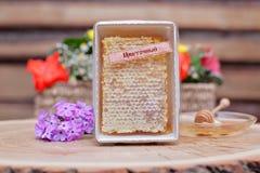 Miel respetuosa del medio ambiente en los tarros de cristal Fotografía de archivo