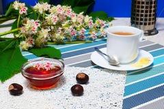 Miel, taza de té, y frutas de la castaña Fotos de archivo libres de regalías