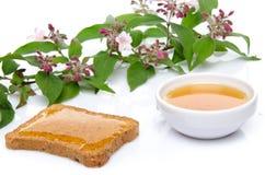 Miel, tostada y flores Fotografía de archivo libre de regalías